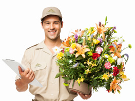 Professional Flower Delivery
